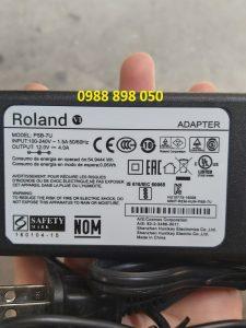 ADAPTER NGUỒNĐÀN ORGAN ROLAND BK5